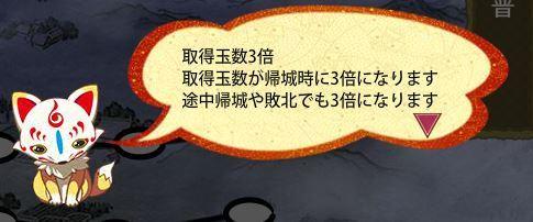 調査道具3.JPG